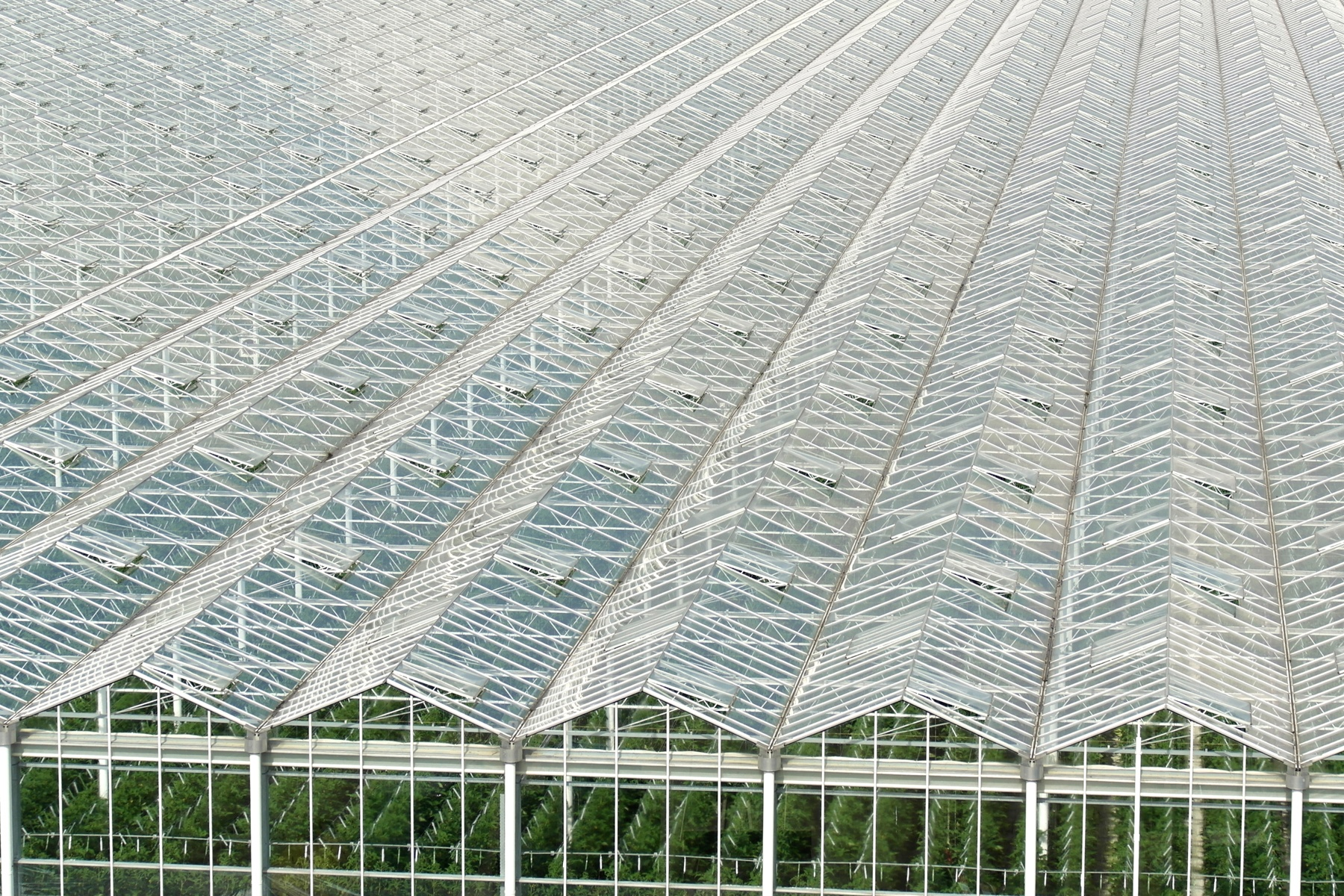 Greenhouse - 11OCT13.jpg